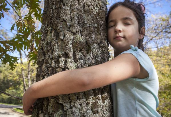 Actividades para niños con discapacidad visual - Investigamos el entorno
