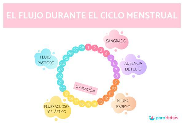 Cómo saber si estoy ovulando: síntomas y cálculo - 7 Señales y síntomas de ovulación