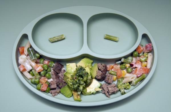 Qué hacer cuando un niño no quiere comer sólido - Consejos para que los niños muestren interés en los alimentos sólidos