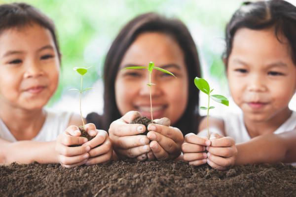 Actividades para la primavera en infantil - Plantar